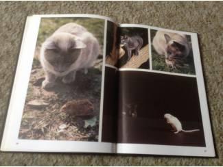 Katten Een Boek van katten ,lieve schattige huisdieren en aangenaam