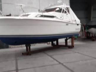 Motorjacht - Moterboot Trojan 25 Express