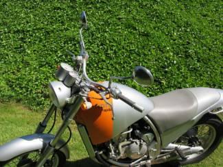 Motoren   Aprilia Aprilia Moto 6.5