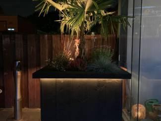 Boom/Bloembak van steigerhout met verlichting
