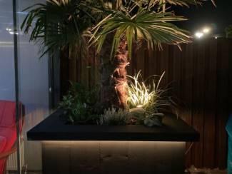 Bloembakken Boom/Bloembak van steigerhout met verlichting